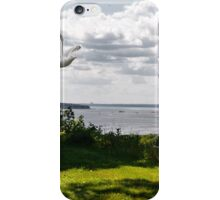Business as Usual on James Street iPhone Case/Skin
