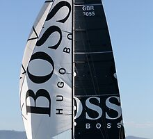 Hugo Boss II by amykphotography