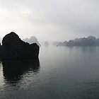 Ha Long Bay, Vietnam by Linda  Tenenbaum