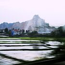 Hanoi Countryside by Linda  Tenenbaum