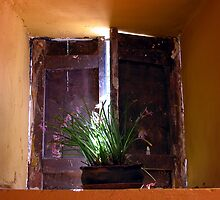 Urubamba Window by Lucy Hollis