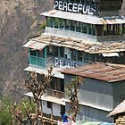 Himalayan Guesthouse by kateabell
