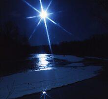 Star Light, Star Bright, First Star I Seen Tonight by Tim Denny