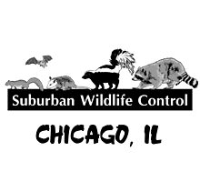 Suburban Wildlife Control - Chicago, IL tee by suburbanwild