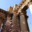 palace of fine arts by Jahana Bossard