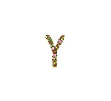Capital Letter Y Part of a set of letters, Numbers and symbols  by PhotoStock-Isra
