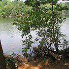 Fishing Spot by resada