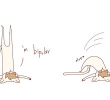 """""""'m bipolar"""" weird cats by wade-ebooks"""