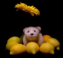 Lemons Delight by jerry  alcantara