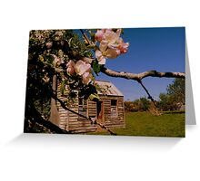 The lonely Apple Tree! - Old House - NZ - Southalnd Greeting Card