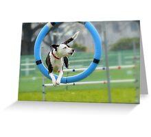 Hey...I Can Fly Through Hoops!!! - Flygility - NZ Greeting Card
