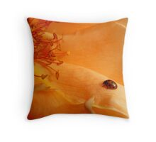 The Lady And The Rose - Rose - NZ Throw Pillow