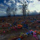 Shoshone Cemetery by Merritt Brown III