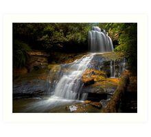 Lyrebird Glen Falls. Art Print