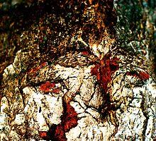 Bloody Tears by Julie Marks