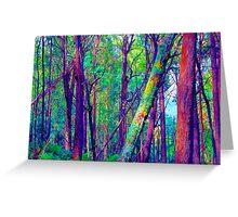 Psychedelic RainForest Series #5 - Yarra Ranges National Park , Marysville Victoria Australia Greeting Card
