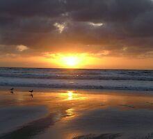 California Sunset at Christmas by bachmda
