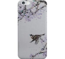 Spring v2 iPhone Case/Skin