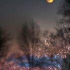 Moonrise by James Even