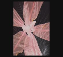 Pink cassia with feather by Rachel Toohey