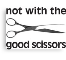 Not With The Good Scissors! Canvas Print