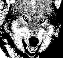 14 Angry Wolf By Chris McCabe - DRAGAN GRAFIX by Christopher McCabe
