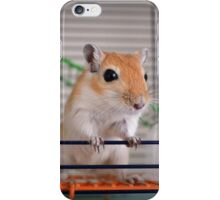Gerbil iPhone Case/Skin