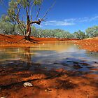 Pilbara River by Peter Hodgson