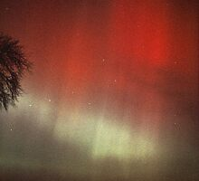 Red Aurora in Ursa Major by Duncan Waldron
