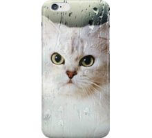 Mistletoe Through The Window iPhone Case/Skin