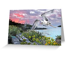 Longtail over Castle Island Greeting Card