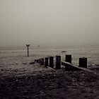 Findhorn Bay by Tez Watson