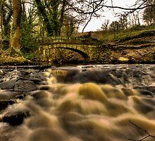 Under The Bridge by Dave Warren