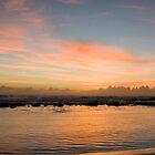 Bronte Beach Sunrise by Bradley Ede