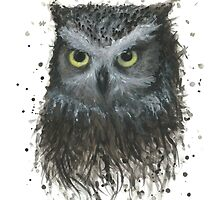 Oliver the Owl by Linden Reekie