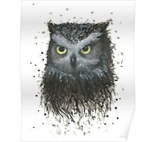 Oliver the Owl Poster
