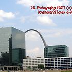 Downtown St. Louis & the Arch by Sade