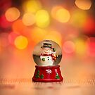 The Happy Snowman by Andy Freer