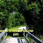 Crossing the Bridge by Judi Taylor