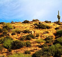 Lone Saguaro Sears-Kay Ruin Tonto National Forest I by Roger Passman