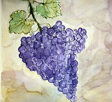 Grapes by derekmccrea