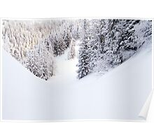 Snowy Poster