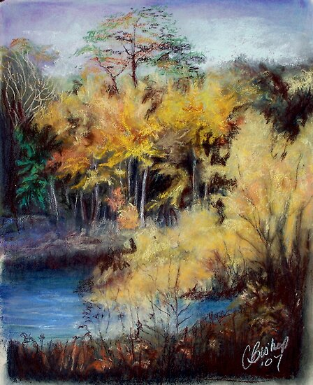 Kathy's Pond by Carolyn Bishop