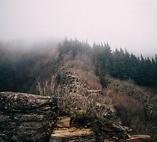 Angel's Rest by tonyell