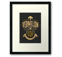 Vermilion Gym Framed Print