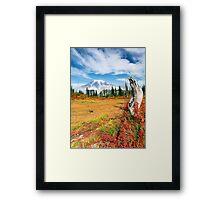 Autumn Majesty Framed Print