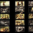 Boxing Storyboards by Evan Lole