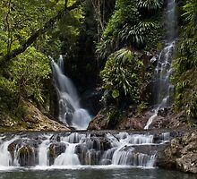 Elabana Falls by Nicholas Coote