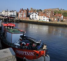 Whitby by evaclapham