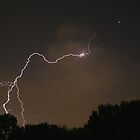 Tampa Bay Lightning by MMerritt